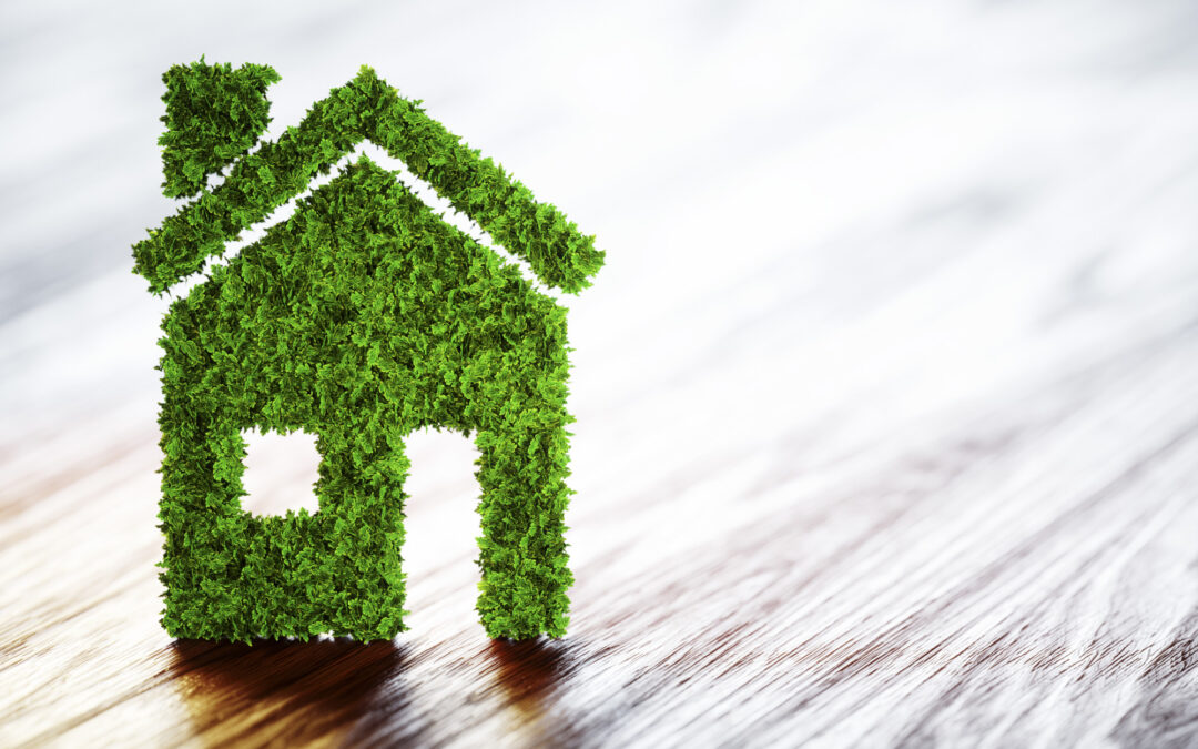 5 Tips for a More Eco-Friendly Home