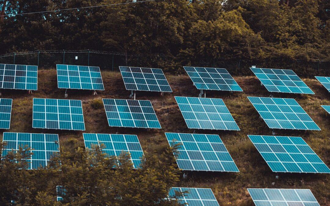 Do Solar Panels Save Your Money?